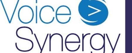 Voice Synergy
